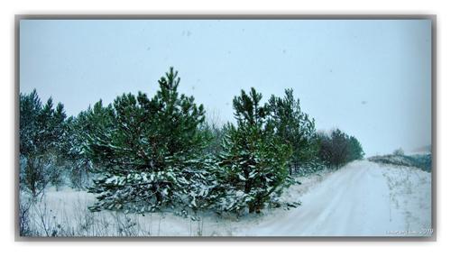 Экш-панорамы в Рождественскую метель
